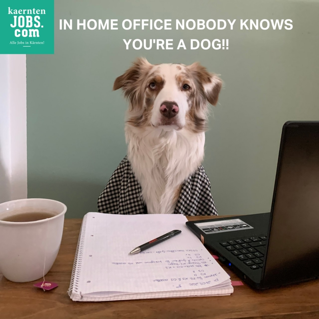 Corona Home Office
